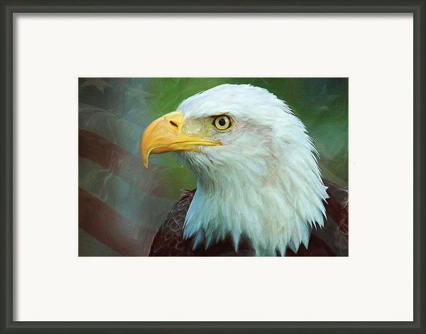 Patriot Framed Print By Heidi Smith