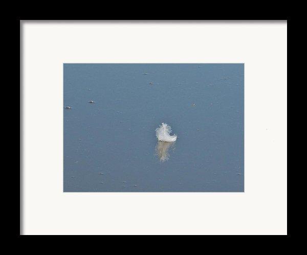 Peace Framed Print By Alison Richardson-douglas
