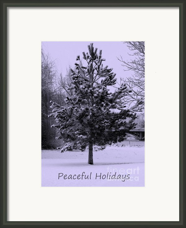 Peaceful Holidays Framed Print By Carol Groenen