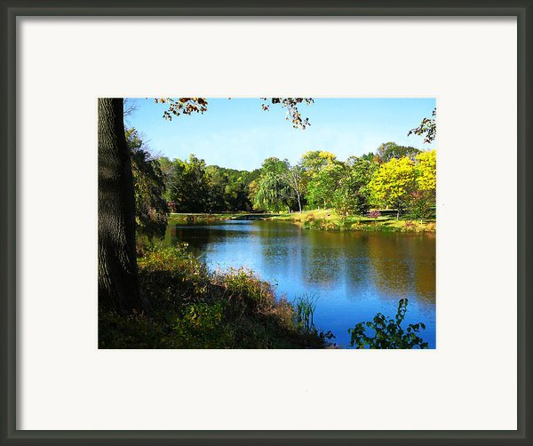 Peaceful Lake Framed Print By Susan Savad