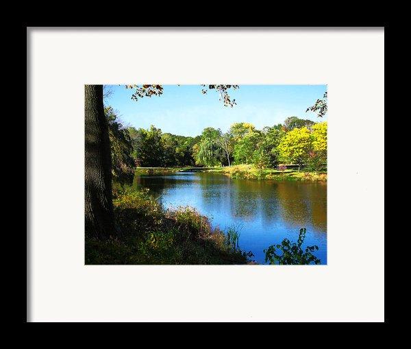 Peaceful Lake Framed Print By Susan Savad
