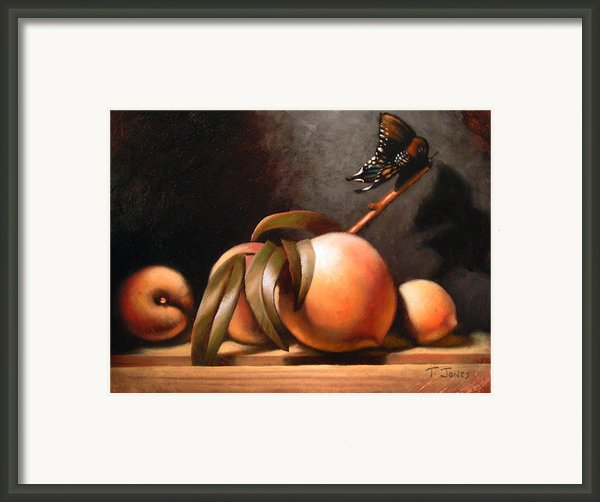 Peaches And Butterfly Framed Print By Timothy Jones