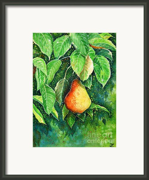 Pear Framed Print By Zaira Dzhaubaeva