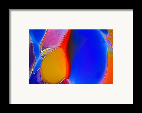 Penguins Framed Print By Omaste Witkowski