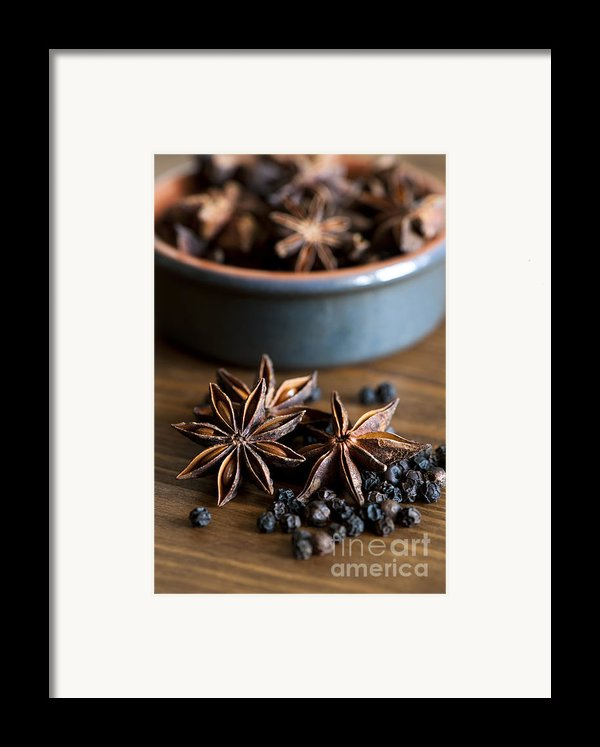 Pepper And Spice Framed Print By Anne Gilbert