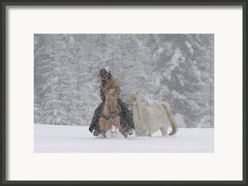 Persevere Through All Framed Print By Diane Bohna