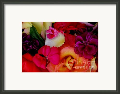 Petal River Framed Print By Jeanette French
