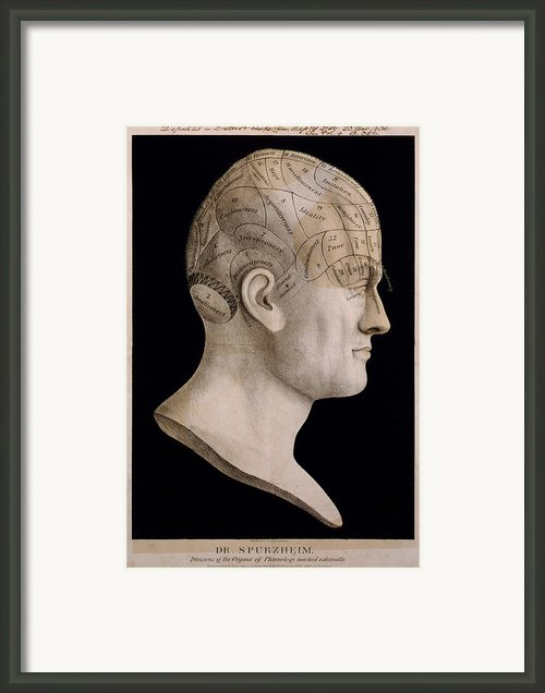 Phrenology Framed Print By Nomad Art And  Design