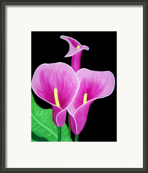 Pink Calla Lillies 2 Framed Print By Angelina Vick