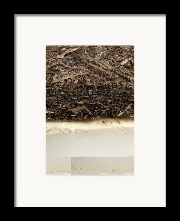 Plant-based Insulating Materials Framed Print By Science Photo Library