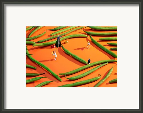 Playing Tennis Among French Beans Little People On Food Framed Print By Paul Ge