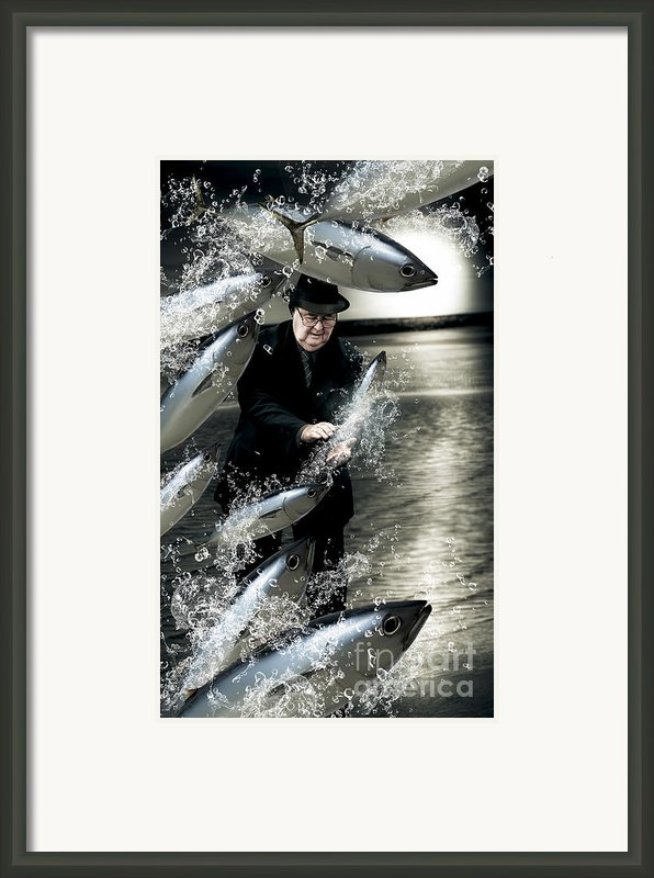 Plenty Of Fish In The Sea Framed Print By Ryan Jorgensen