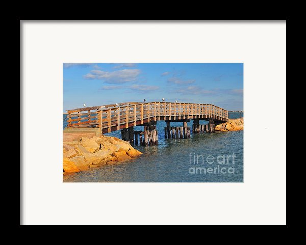 Plymouth Harbor Breakwater Framed Print By Catherine Reusch  Daley
