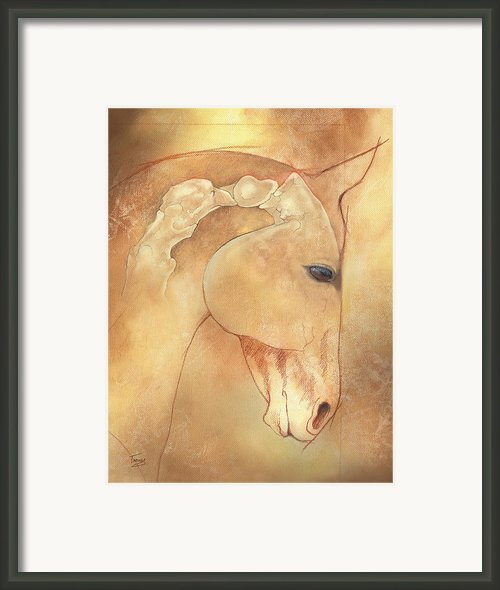Poll Meet Atlas Axis Framed Print By Catherine Twomey