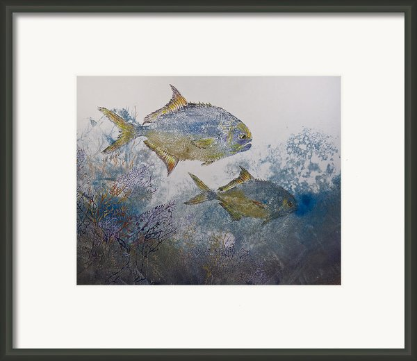 Pompano And Sea Fans Framed Print By Nancy Gorr