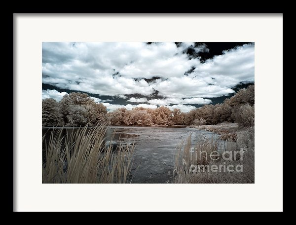 Pond In Autumn Framed Print By John Rizzuto