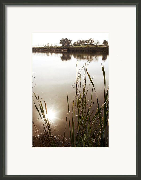Pond Framed Print By Les Cunliffe