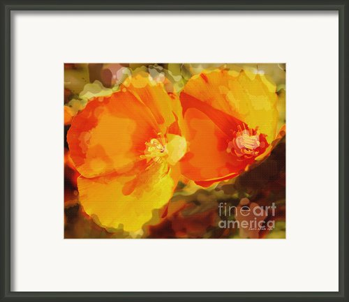 Poppies On Fire Framed Print By Author And Photographer Laura Wrede