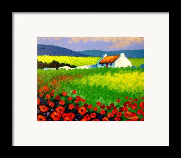 Poppy Field - Ireland Framed Print By John  Nolan
