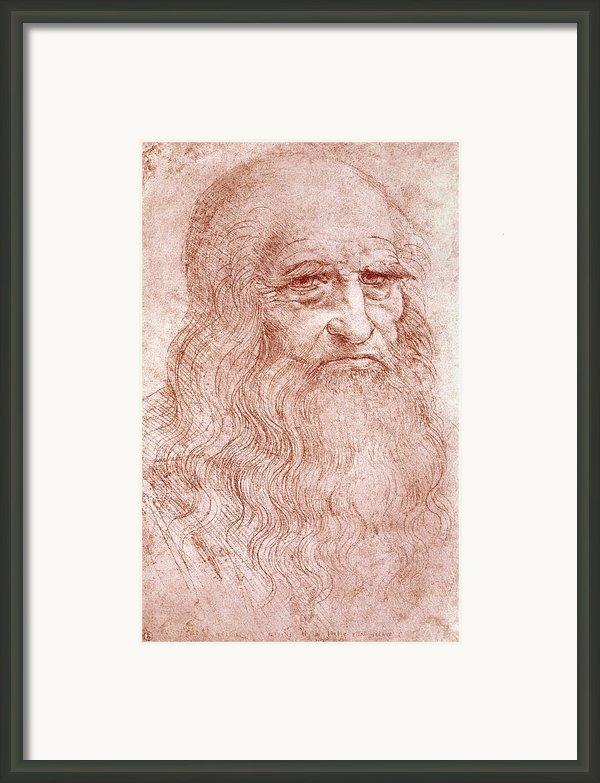 Portrait Of A Bearded Man Framed Print By Leonardo Da Vinci