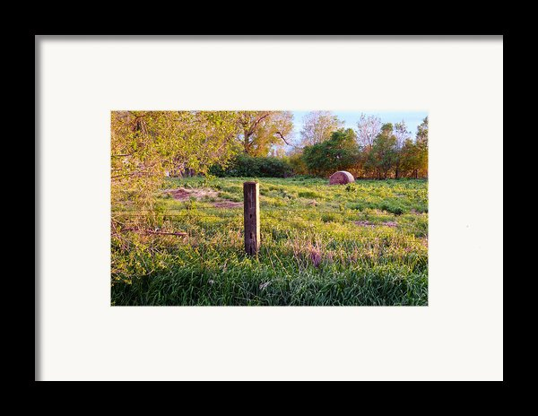 Post And Haybale Framed Print By Tracy Salava