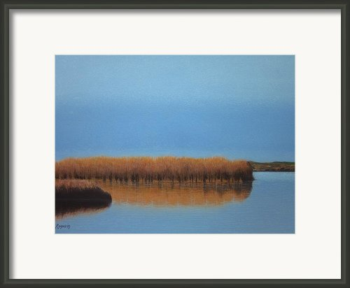 Powder Blue Marsh Framed Print By Harvey Rogosin