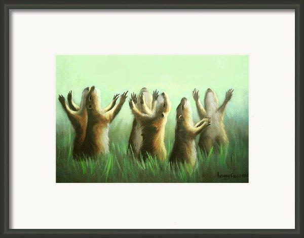 Praising Prairie Dogs Framed Print By Anthony Falbo