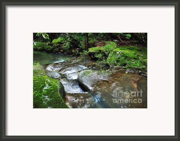 Pretty Green Creek Framed Print By Kaye Menner