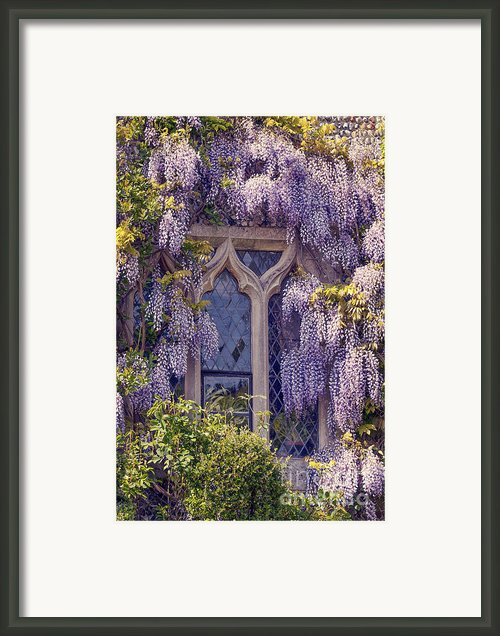 Pretty Window Framed Print By Svetlana Sewell