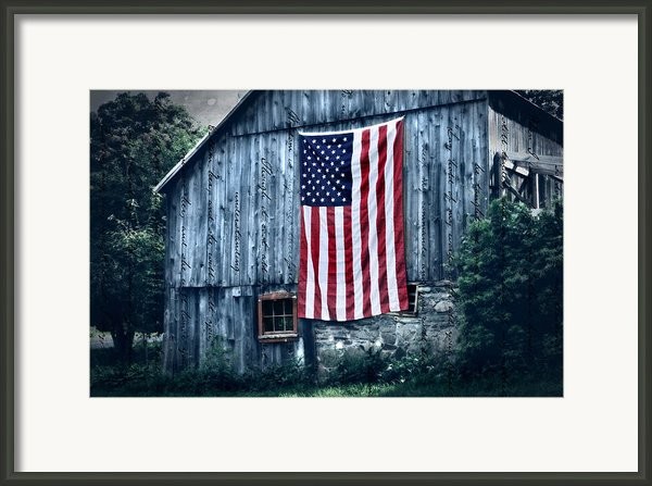 Pride Framed Print By Thomas Schoeller
