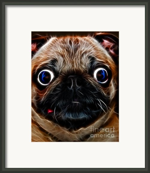 Pug Dog - Electric Framed Print By Wingsdomain Art And Photography
