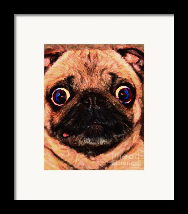 Pug Dog - Painterly Framed Print By Wingsdomain Art And Photography