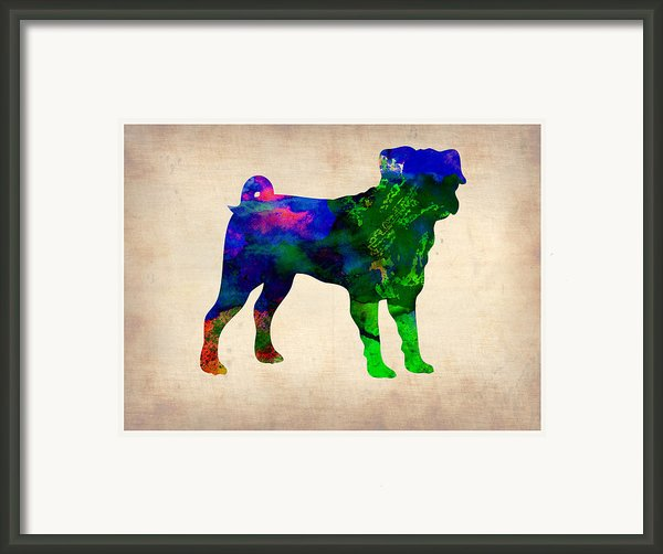 Pug Watercolor  Framed Print By Irina  March