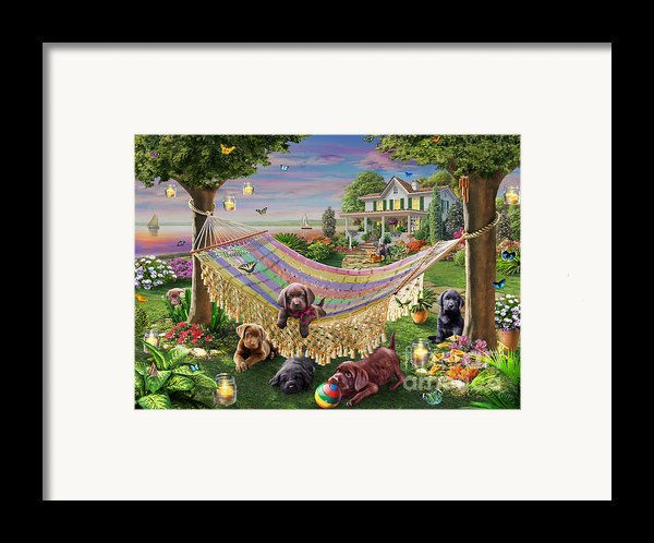 Puppies And Butterflies Framed Print By Adrian Chesterman
