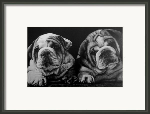 Puppies Framed Print By Jerry Winick