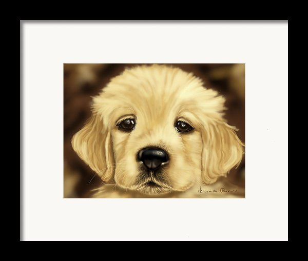 Puppy Framed Print By Veronica Minozzi