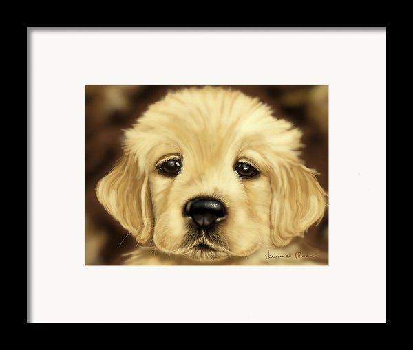 Puppy Framed Print By Veronica Minozzi