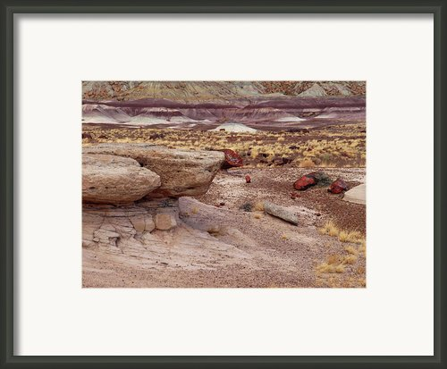 Purple Earth Framed Print By Melissa Peterson