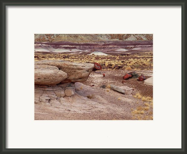 Purple Earth Framed Print By James Peterson