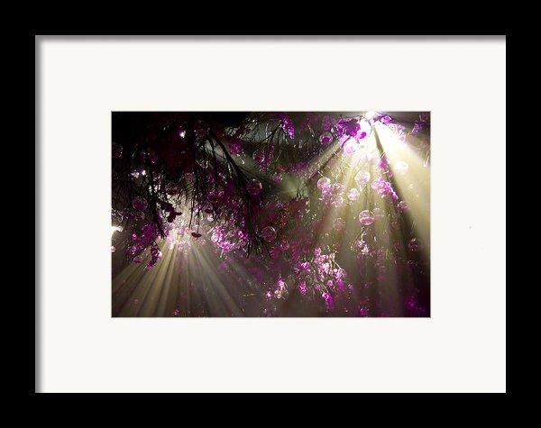 Purple Magic Framed Print By Nadya Ost