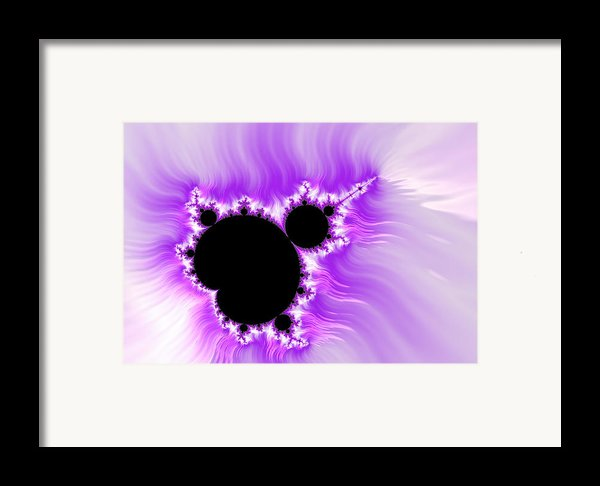 Purple White And Black Mandelbrot Set Digital Art Framed Print By Matthias Hauser
