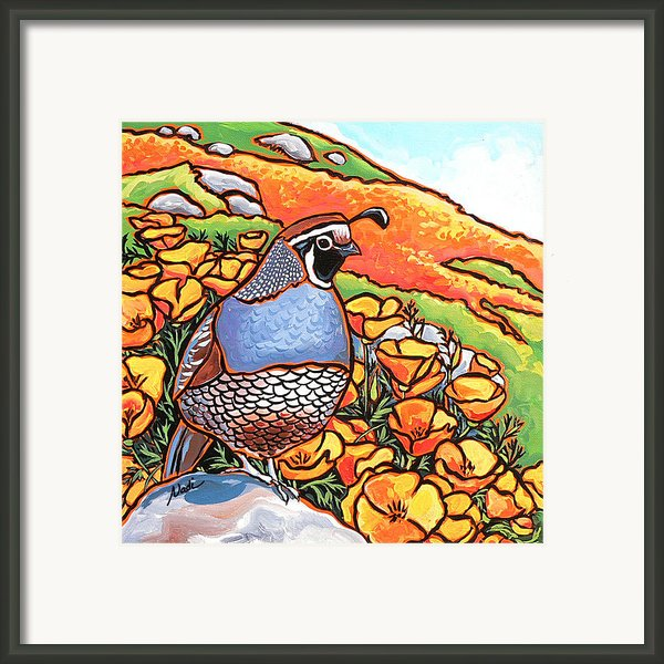 Quail Poppies Framed Print By Nadi Spencer
