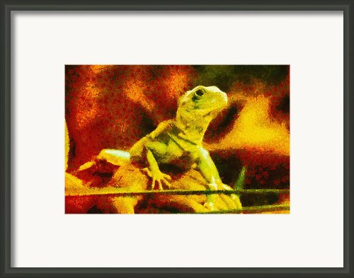 Queen Of The Reptiles Framed Print By Ayse T Werner
