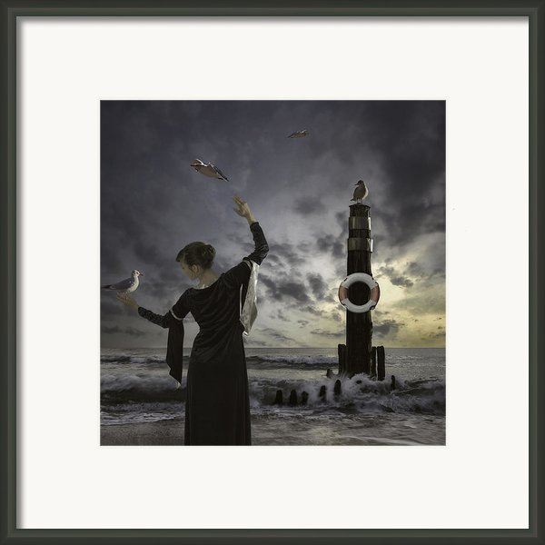 Queen Of The Seagulls Framed Print By Joana Kruse