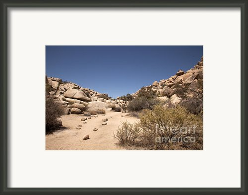 Quiet Time Framed Print By Amanda Barcon
