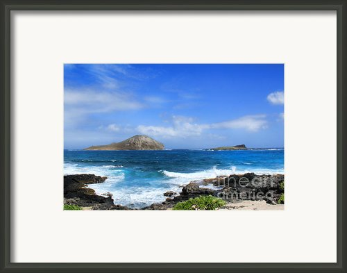 Rabbit Manana Island Oahu Hawaii Framed Print By Leslie Kirk