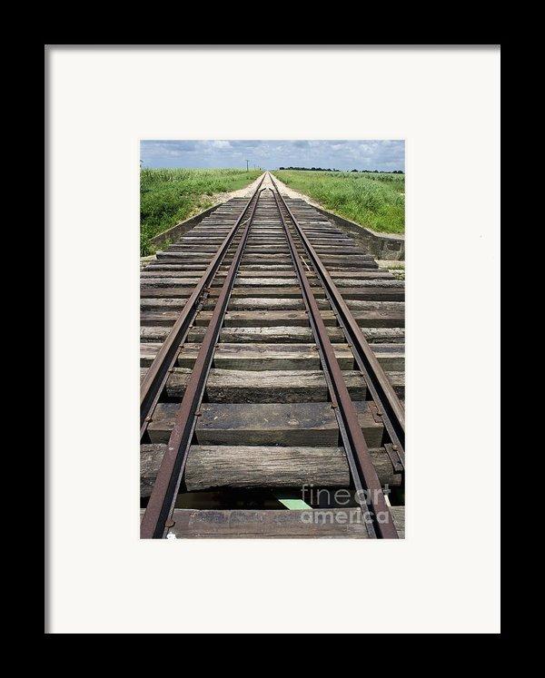 Railroad Tracks Framed Print By Sami Sarkis