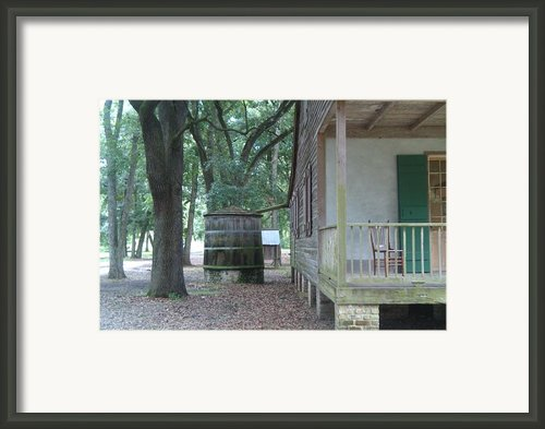Rain Catcher Framed Print By Jennifer Lavigne