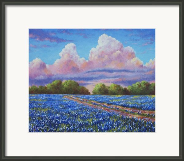 Rain For The Bluebonnets Framed Print By David G Paul