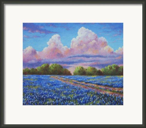Rain For The Bluebonnets Framed Print By David G Paul